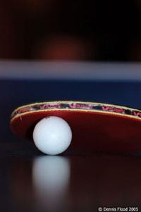 Ping_pong_225_2