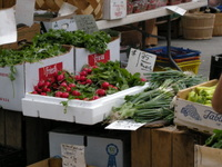 Radishes_for_sale