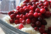 Cranberries_and_dry_ingredients