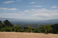 Ridge_vineyard_view